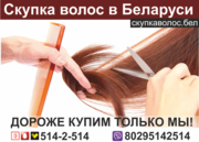 Продать волосы в Бресте.